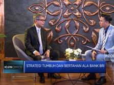 2020, Bank BRI Targetkan Penyaluran Kredit UMKM Capai 80%