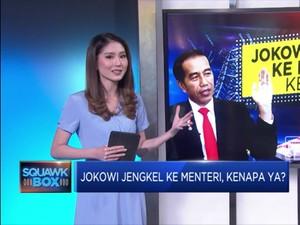 Jokowi Jengkel ke Menteri, Kenapa Ya?