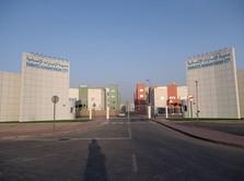 Dalam 48 Jam, Uni Emirat Arab Dirikan Kota Baru untuk Corona!