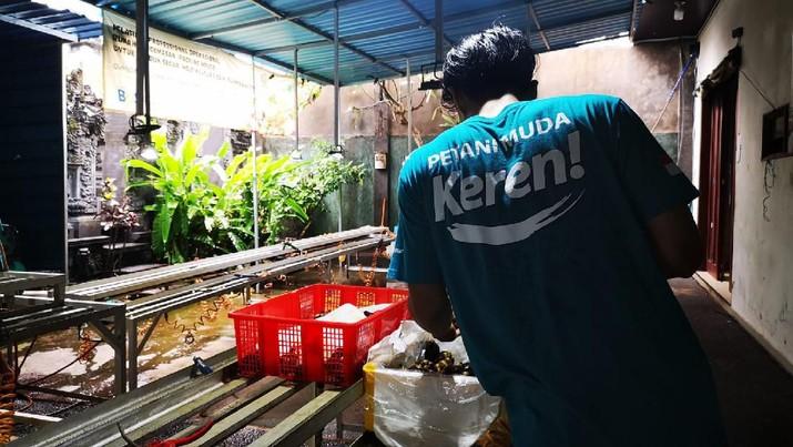 Petani asal Cianjur membuat gagasan untuk menyediakan produk pertanian yang bisa didapatkan masyarakat tanpa harus keluar rumah.