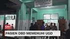 VIDEO: Pasien DBD Memenuhi UGD, Petugas Medis Kewalahan