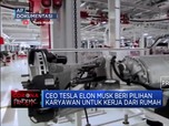 Wilayahnya di-Lockdown, Pabrik Tesla Jalan Terus!