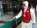 Ahli Beberkan Cara Membuat Disinfektan Alternatif dari Cuka