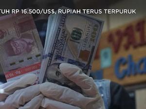 Sentuh Rp 16.500/US$, Rupiah Terus Terpuruk