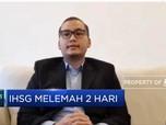 Analis: Investor Mulai Masuk,Pelemahan IHSG Tak Terlalu Dalam