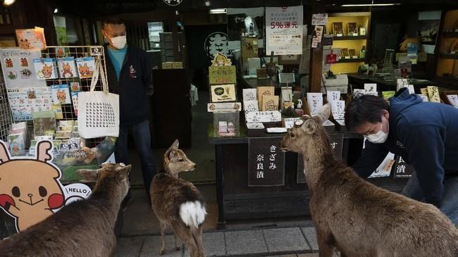 Lokasi wisata Nara, Jepang yang biasanya ramai dikunjungi wisatawan kini senyap lantaran ditutup di tengah larangan bepergian akibat pandemi virus corona.(AP Photo/Jae C. Hong)