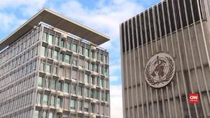 VIDEO: WHO Sebut Kekurangan APD Ancaman Mendesak