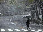Tekan Kasus Corona, Jepang Tutup Taman Sakura