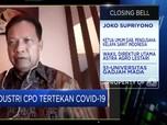 Gara-gara Corona, Ekspor Kelapa Sawit RI Turun Hingga 30%