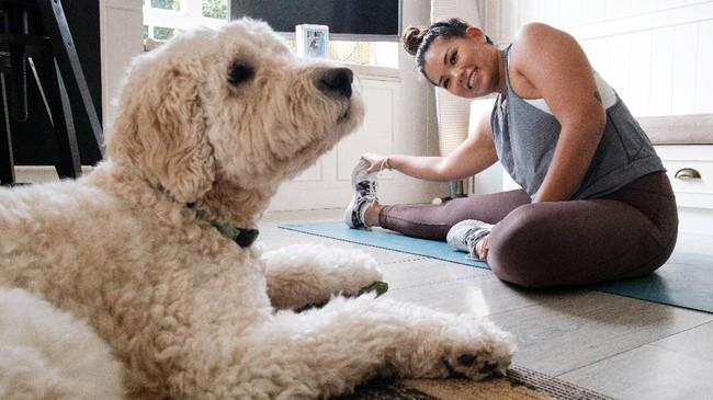 Yoga online memiliki beberapa keterbatasan di antara lain para instruktur kesulitan untuk membenarkan pose yang salah. Namun, yoga online tetap bisa membantu murid-muridnya mengurangi tingkat stress dan mempertahankan kejernihan mental. (Photo by Anthony WALLACE / AFP)