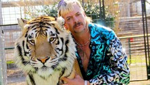 Tiger King Cetak Rekor Serial Netflix Paling Ditonton 15 Hari