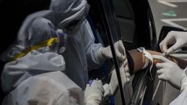 Obat Ivermectin Diklaim Bisa Bunuh Virus Corona dalam 48 Jam