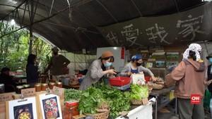 VIDEO: Pandemi Corona, Warga Hong Kong Beli Sayuran Lokal