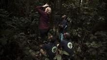 FOTO: Menyelamatkan Trenggiling di Afrika