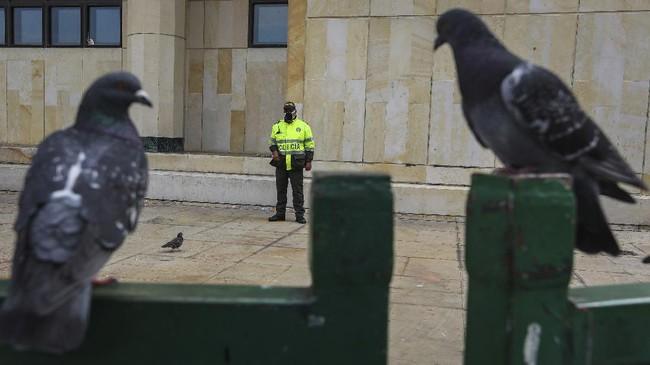 DiBogota, Kolombia, kawanan burung mulai kembali berani menampakkan diri.(AP Photo/Fernando Vergara)