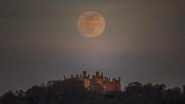 FOTO: Mengejar Cahaya Bulan Merah Muda