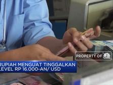 BI: Kepercayaan Pasar Dorong Penguatan Rupiah