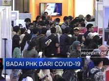 2,8 Juta Pekerja di PHK dan Dirumahkan Akibat Covid-19