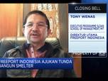 Tony Wenas: Efek Corona, Freeport Ajukan Tunda Bangun Smelter