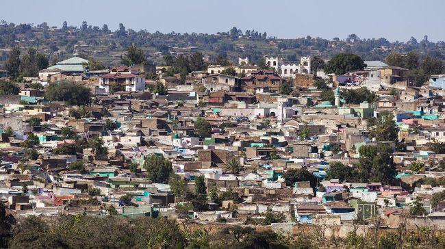 Kopi Harar, Legenda Kedamaian yang Dicari Penyair Dunia