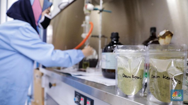 Uji Lab Kandidat Obat Herbal untuk Covid-19 (CNBC Indonesia/Andrean Kristianto)
