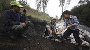 FOTO: Petani di Kolombia Coba Peruntungan Jadi Youtuber