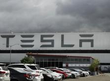 Sambut 2021, Tesla Kirimkan SUV Made in-China ke Konsumen