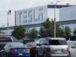 RI Bakal Jadi Raja Baterai Listrik, Luhut: Tesla Tertarik!