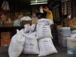 Bos Bulog Berambisi Genjot Produksi Pangan dari Sagu