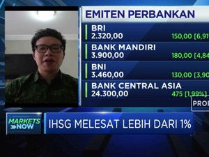 Analis:Investor Asing Respon Negatif Pembentukan Bank Jangkar
