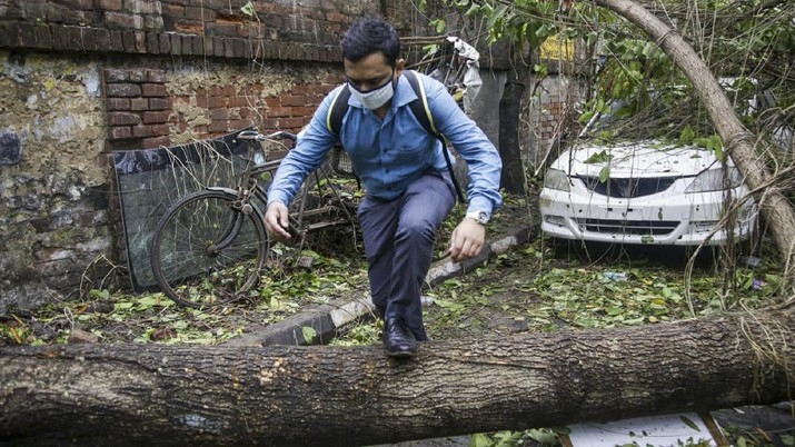 A man makes his way tpast a tree fallen in the middle of a road after Cyclone Amphan hit the region in Kolkata, India, Thursday, May 21, 2020. A powerful cyclone ripped through densely populated coastal India and Bangladesh, blowing off roofs and whipping up waves that swallowed embankments and bridges and left entire villages without access to fresh water, electricity and communications. (AP Photo/Bikas Das)