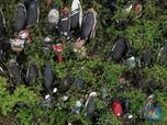 Penampakan 'Kuburan' Ribuan Motor di Teluk Pucung Bekasi