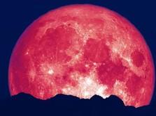 Gerhana Bulan Stroberi Hiasi Langit RI, Ini Cara Melihatnya