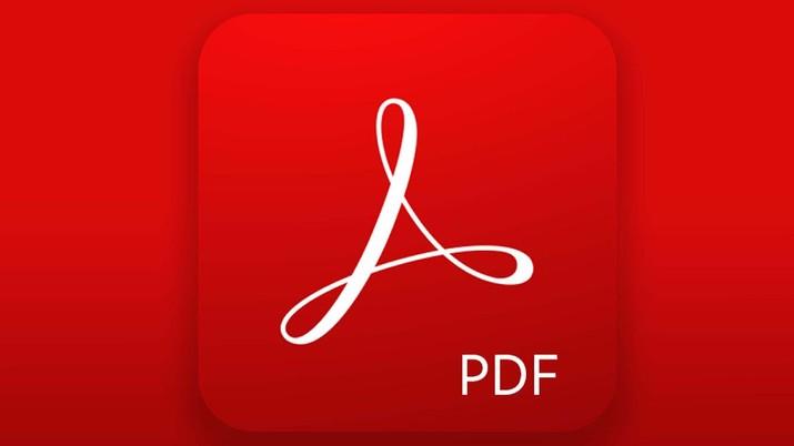 PDF. Ist