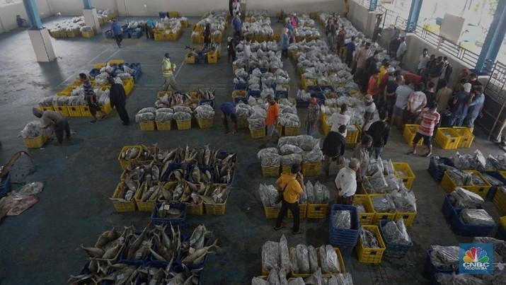 Pasar Lelang Ikan Muara Angke (CNBC Indonesia/Tri Susilo)