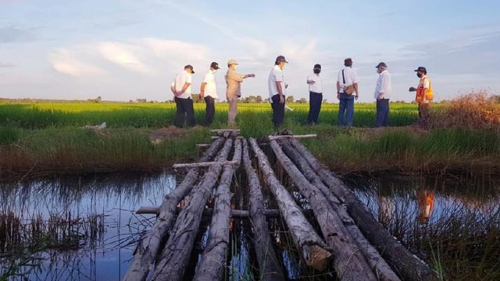 Menteri Basuki Tinjau Rehabilitasi Jaringan Irigasi Lahan Potensial Lumbung Pangan Baru di Kalimantan Tengah. (Dokumentasi PUPR)
