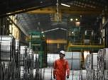 PGN Siap Masuk Bisnis Petrokimia, Kapan?