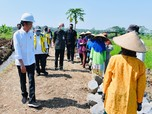 Jokowi Happy, 7 Pabrik Relokasi dari China, Jepang & Korea
