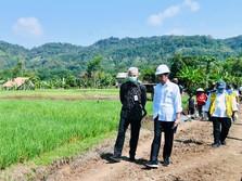 Jokowi & Ganjar Blusukan di Batang, Ada Apa?