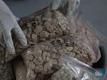 Harta Karun Rare Earth yang Bikin China Kesal Dihargai Murah