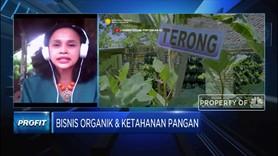 Transportasi, Tantangan Bisnis Pangan Organik Kala Pandemi