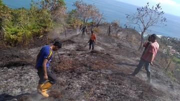 Dua Tahun Pandemi, RI Bebas dari Musibah Kebakaran Hutan thumbnail