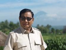 Jokowi Titahkan Prabowo Jadi 'Bos' Lumbung Pangan RI