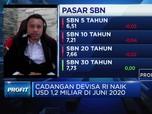 Ekonom: Pandemi, Posisi Cadev Stabil di Kisaran USD 130 M