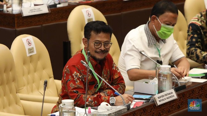 Menteri Pertanian (Mentan) Syahrul Yasin Limpo menghadiri rapat kerja bersama Komisi IV DPR RI, Selasa (7/7) dengan menggunakan kalung antivirus corona. (CNBC Indonesia/ Muhammad Sabki)