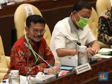 Pegang Lautan Sampai Pertanian, Menteri SYL Siap Kerja Ngebut