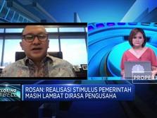 Rosan Roeslani: Realisasi Stimulus Pemerintah Masih Lambat