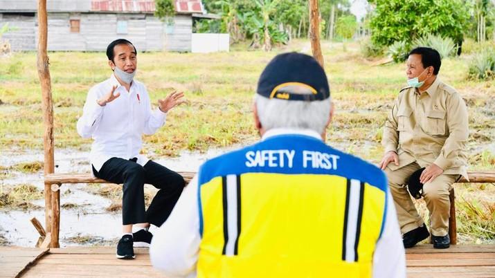 Presiden Joko Widodo beserta rombongan meninjau lokasi pengembangan food estate atau lumbung pangan nasional dalam kunjungan kerja ke Provinsi Kalimantan Tengah pada Kamis (9/7/20220). (Biro Pers Sekretariat Presiden/ Laily Rachev)
