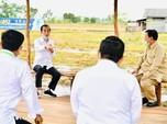 Jokowi Geram Subsidi Pupuk Rp 33 T, Return ke Negara Mana?