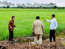 Moeldoko Buka-bukaan Soal Prabowo Jadi Bos Lumbung Pangan RI